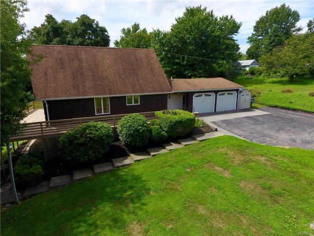 31 Chestnut Lane, Milton, NY 12547 (MLS #4834359) :: Mark Boyland Real Estate Team