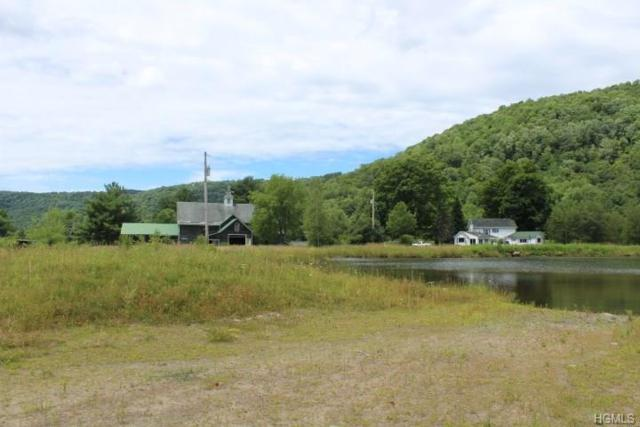 71 Beaverkill Road, Roscoe, NY 12776 (MLS #4834405) :: Shares of New York