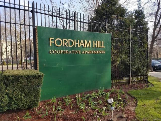 8 Fordham Hill Oval 14B, Bronx, NY 10468 (MLS #4834500) :: Mark Boyland Real Estate Team