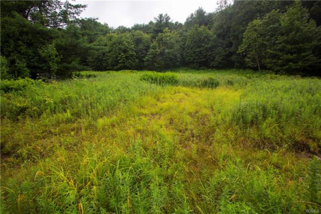 Old Farm Lane, Claryville, NY 12725 (MLS #4834680) :: Mark Boyland Real Estate Team