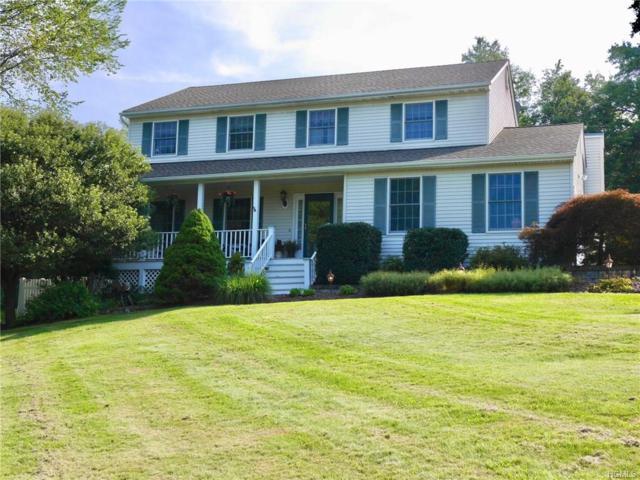 16 Ann Elizabeth Drive, Washingtonville, NY 10992 (MLS #4834930) :: William Raveis Baer & McIntosh