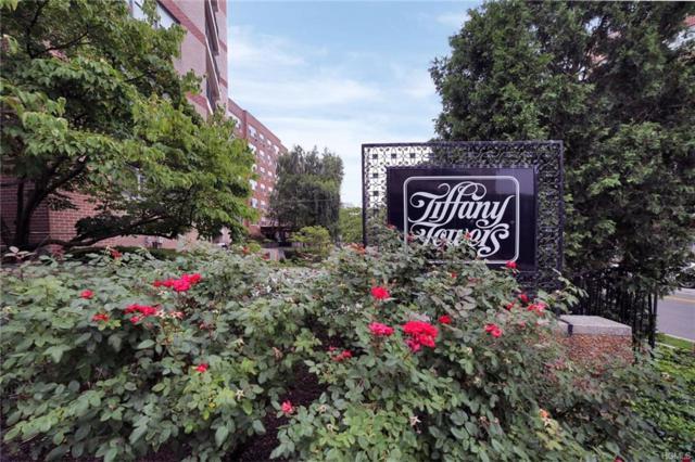 56 Doyer Avenue 3B, White Plains, NY 10605 (MLS #4835137) :: Mark Boyland Real Estate Team