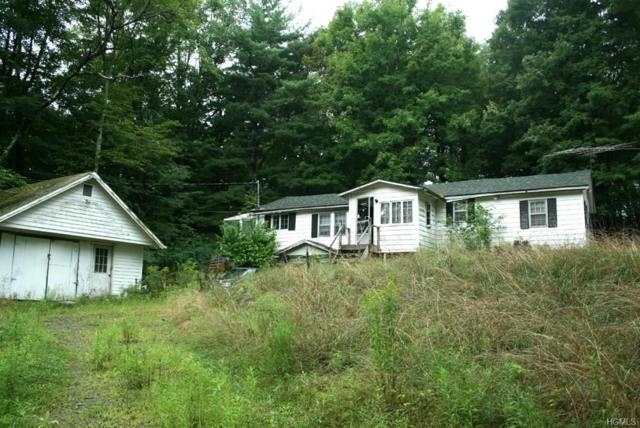 109 Swiss Hill Road, Jeffersonville, NY 12748 (MLS #4835185) :: Shares of New York