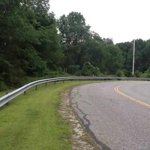 Shoddy Hollow (2.3 Acres) Road, Otisville, NY 10963 (MLS #4835208) :: Michael Edmond Team at Keller Williams NY Realty
