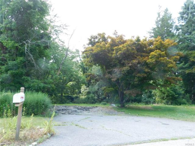 3617 Buckhorn Street, Shrub Oak, NY 10588 (MLS #4835284) :: Mark Boyland Real Estate Team