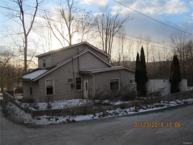 263 Berme Road, Ellenville, NY 12428 (MLS #4835299) :: Michael Edmond Team at Keller Williams NY Realty
