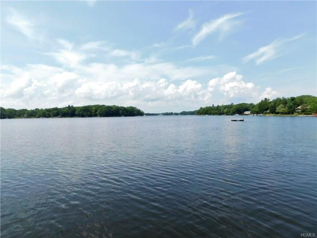 TBD Lake Shore Drive, Rock Hill, NY 12775 (MLS #4835512) :: Stevens Realty Group