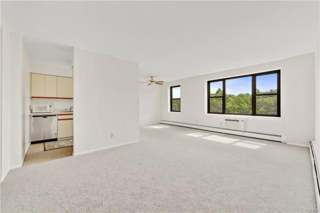 77 Carpenter 6N, Mount Kisco, NY 10549 (MLS #4835795) :: Mark Boyland Real Estate Team