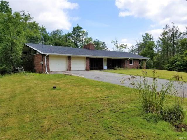 21 Frankie Lane, Liberty, NY 12754 (MLS #4836257) :: Mark Boyland Real Estate Team