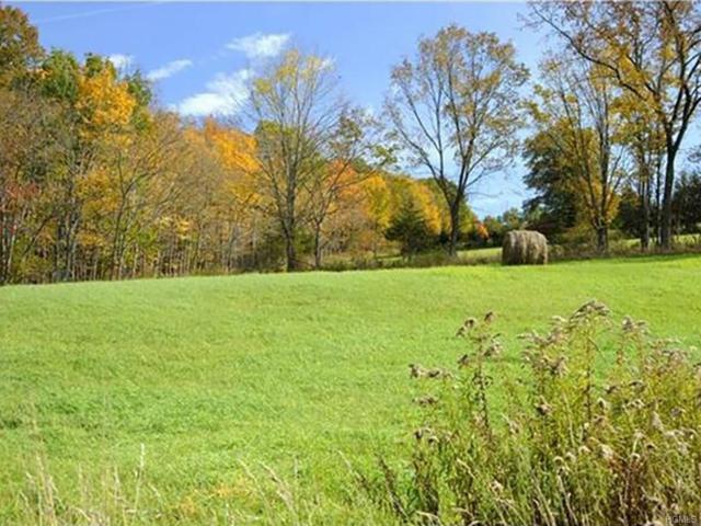 454 County Route 17, Montgomery, NY 12549 (MLS #4836470) :: Michael Edmond Team at Keller Williams NY Realty