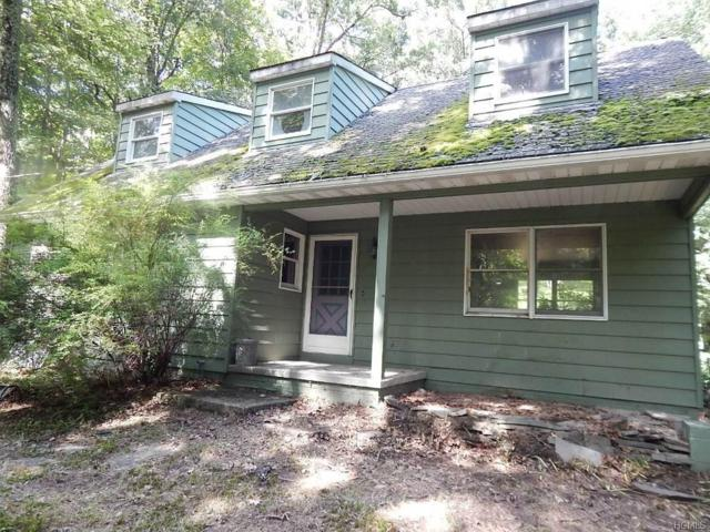 97 Lodge Road, Saugerties, NY 12477 (MLS #4836471) :: Mark Boyland Real Estate Team
