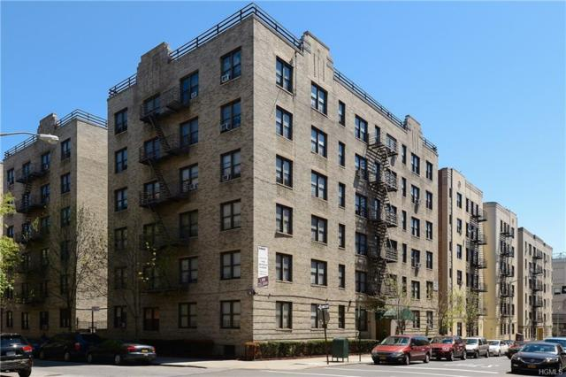 55 E 190 Street #33, Bronx, NY 10468 (MLS #4836664) :: William Raveis Legends Realty Group