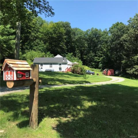 32 Cooperstown Road, Dover Plains, NY 12522 (MLS #4836683) :: Michael Edmond Team at Keller Williams NY Realty