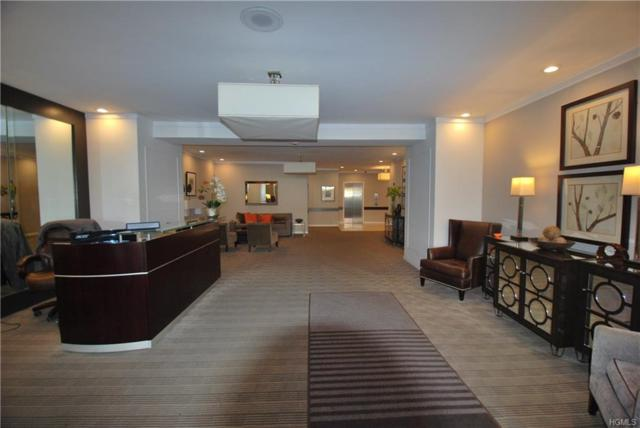 12 Old Mamaroneck Road 5A, White Plains, NY 10605 (MLS #4836820) :: Mark Boyland Real Estate Team