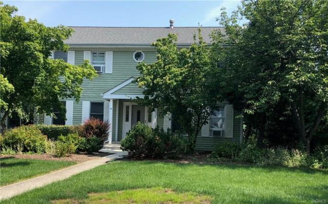 4 Kenilworth Lane, Warwick, NY 10990 (MLS #4837094) :: William Raveis Baer & McIntosh