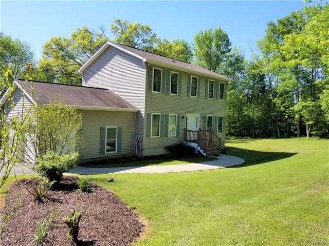 1267 Greenville Turnpike, Port Jervis, NY 12771 (MLS #4837100) :: Mark Boyland Real Estate Team