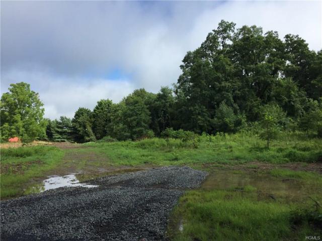 Lot 4 Borden Road, Montgomery, NY 12586 (MLS #4837113) :: William Raveis Baer & McIntosh
