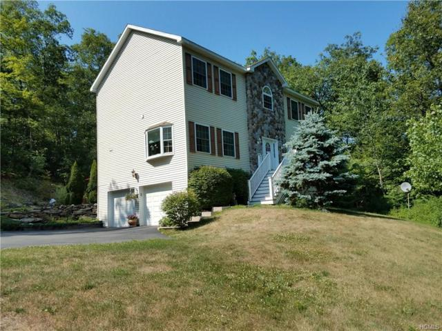 100 Hoefer Road, Red Hook, NY 12571 (MLS #4837164) :: Shares of New York