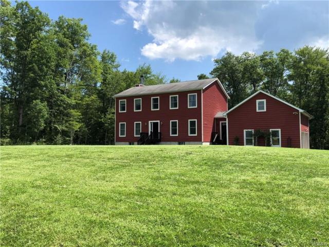 397 Burnt Meadow Road, Gardiner, NY 12525 (MLS #4837221) :: Mark Boyland Real Estate Team