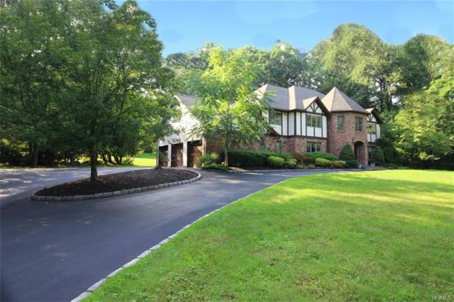 382 Phillips Hill Road, New City, NY 10956 (MLS #4837250) :: Mark Boyland Real Estate Team