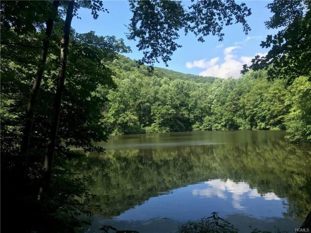 Mountain Brook Drive, Cold Spring, NY 10516 (MLS #4837251) :: Michael Edmond Team at Keller Williams NY Realty