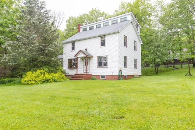 205 Logtown Road, Port Jervis, NY 12771 (MLS #4837412) :: Mark Boyland Real Estate Team