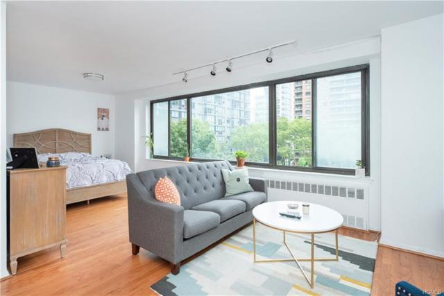 382 Central Park West, New York, NY 10025 (MLS #4837470) :: Mark Seiden Real Estate Team
