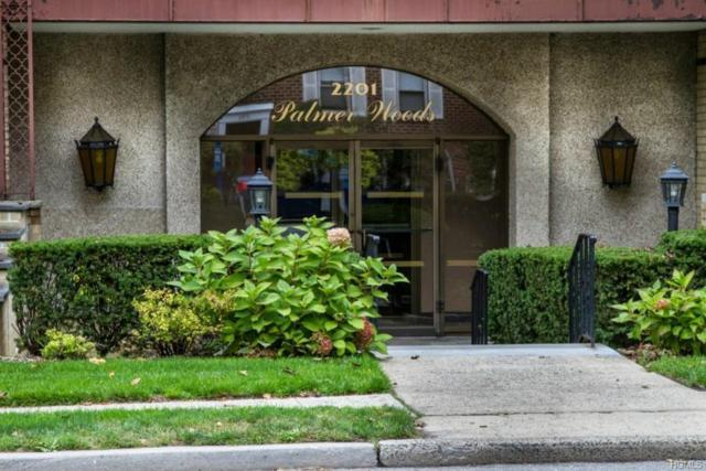 2201 Palmer Avenue 3F, New Rochelle, NY 10801 (MLS #4837489) :: William Raveis Legends Realty Group