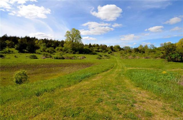Lot 3 Westerly Ridge Drive, Amenia, NY 12501 (MLS #4837561) :: William Raveis Legends Realty Group