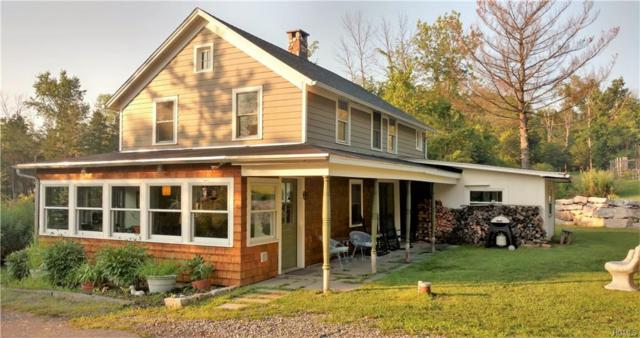 693 County Route 6, High Falls, NY 12440 (MLS #4837731) :: Mark Boyland Real Estate Team