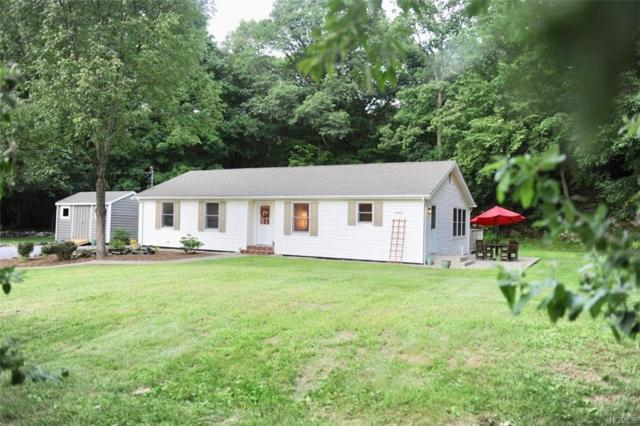 242 Schultz Hill Road, Staatsburg, NY 12580 (MLS #4837796) :: William Raveis Legends Realty Group