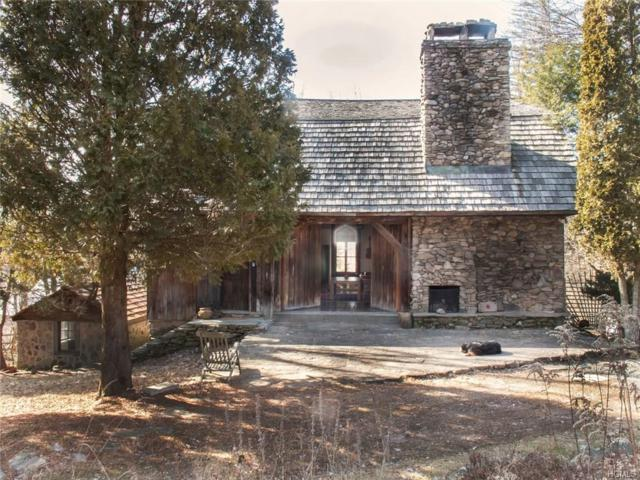 204 William Brown Road, Fremont, NY 12741 (MLS #4837921) :: Stevens Realty Group