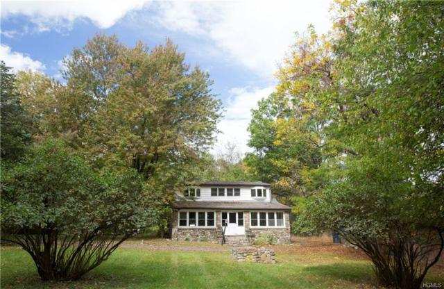 14 Old Dominion Road, Blooming Grove, NY 10914 (MLS #4838007) :: William Raveis Baer & McIntosh