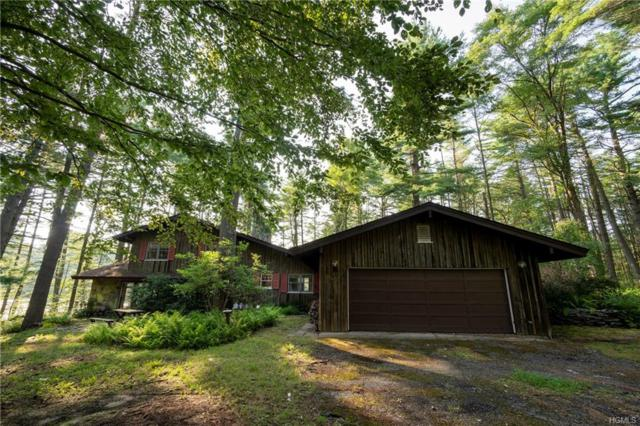 302 Tannery Road, Monticello, NY 12777 (MLS #4838120) :: Mark Boyland Real Estate Team