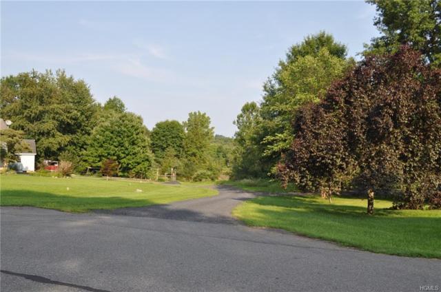 11 Hillside Lane, Plattekill, NY 12568 (MLS #H4838677) :: William Raveis Baer & McIntosh