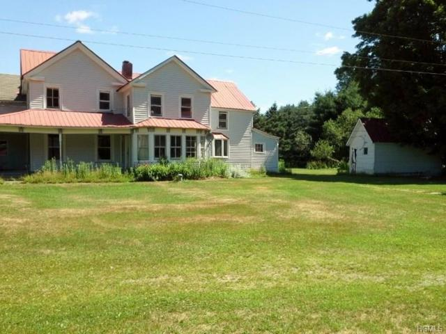 1074 Claryville Road, Claryville, NY 12725 (MLS #4838753) :: Shares of New York