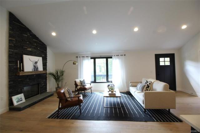 163 Elk Point Road, Livingston Manor, NY 12758 (MLS #4838961) :: Mark Boyland Real Estate Team