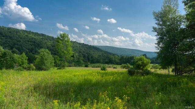 0 County Hwy 42, Call Listing Agent, NY 12116 (MLS #4839016) :: Stevens Realty Group