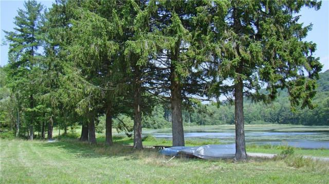 William Brown Rd Road, Fremont, NY 12736 (MLS #4839056) :: Stevens Realty Group