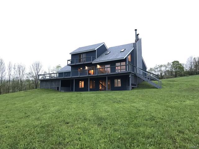 221 Morse Farm Road, Denver, NY 12421 (MLS #4839065) :: Stevens Realty Group