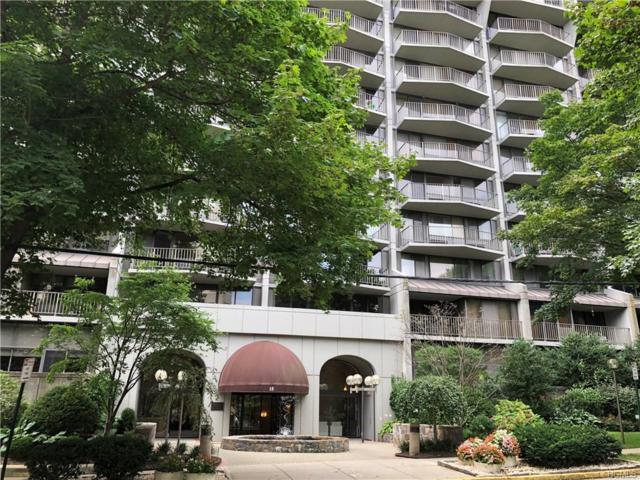 15 Stewart Place 2J, White Plains, NY 10603 (MLS #4839088) :: Mark Boyland Real Estate Team