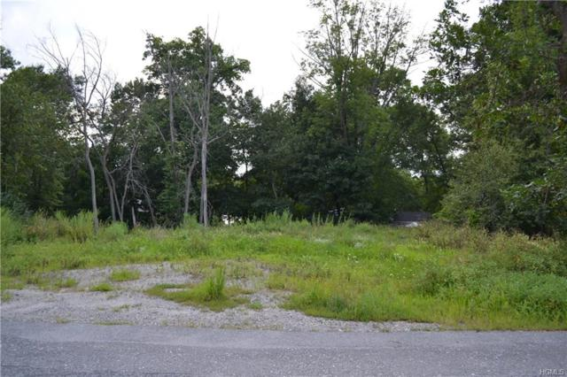 Sayer Road, Blooming Grove, NY 10914 (MLS #4839128) :: William Raveis Baer & McIntosh