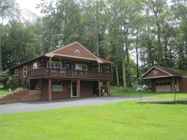 9 Low Road, Wallkill, NY 12589 (MLS #4839155) :: William Raveis Legends Realty Group