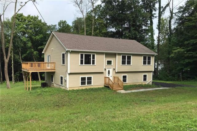 7 Coleman Lane, Wingdale, NY 12594 (MLS #4839221) :: Shares of New York
