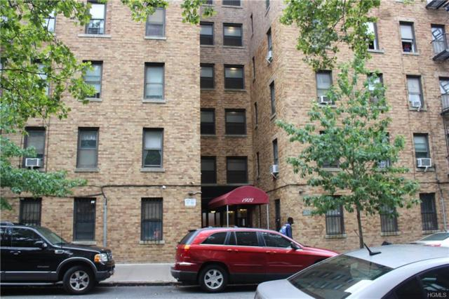 1922 Mcgraw Avenue 2D, Bronx, NY 10462 (MLS #4839282) :: Mark Boyland Real Estate Team