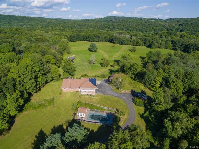 491 Wurtemburg Road, Rhinebeck, NY 12572 (MLS #4839289) :: Mark Boyland Real Estate Team