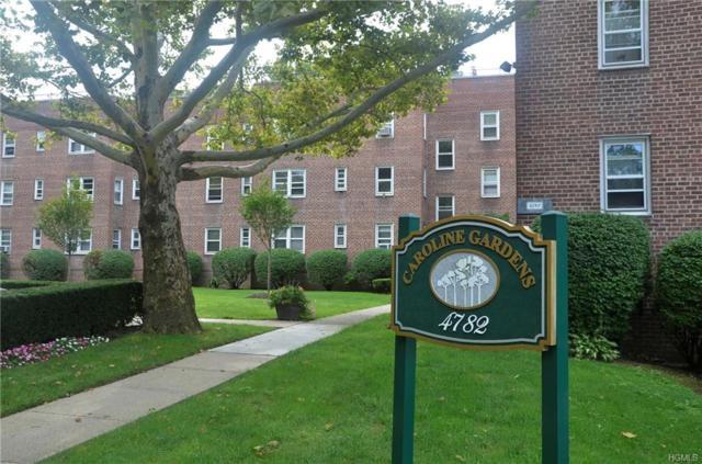 4782 Boston Post Road A-1B, Pelham, NY 10803 (MLS #4839297) :: Shares of New York