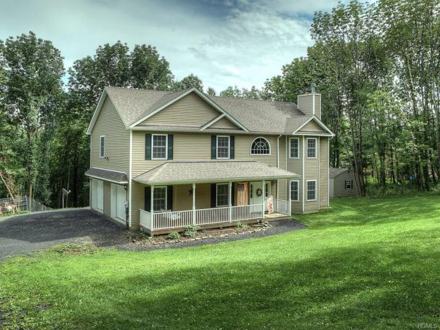 1299 Greenville Turnpike, Port Jervis, NY 12771 (MLS #4839312) :: Shares of New York