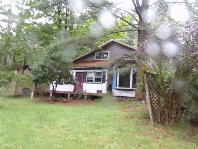 20 Twn Rd 20, Narrowsburg, NY 12764 (MLS #4839401) :: Mark Seiden Real Estate Team