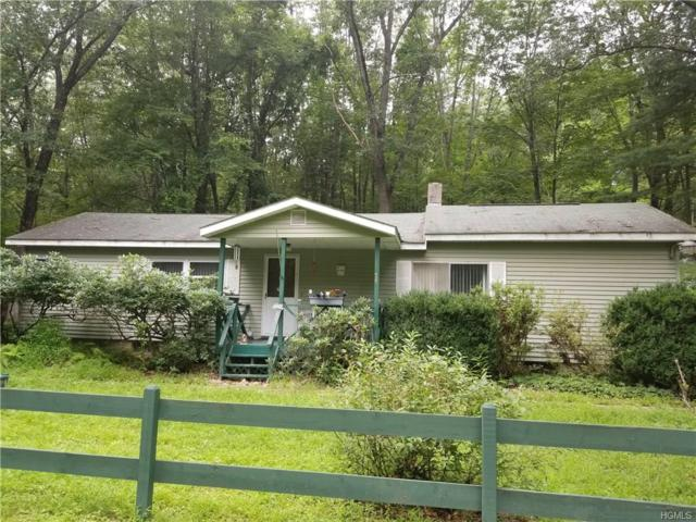 56 Newton Drive, Middletown, NY 10940 (MLS #4839488) :: Shares of New York